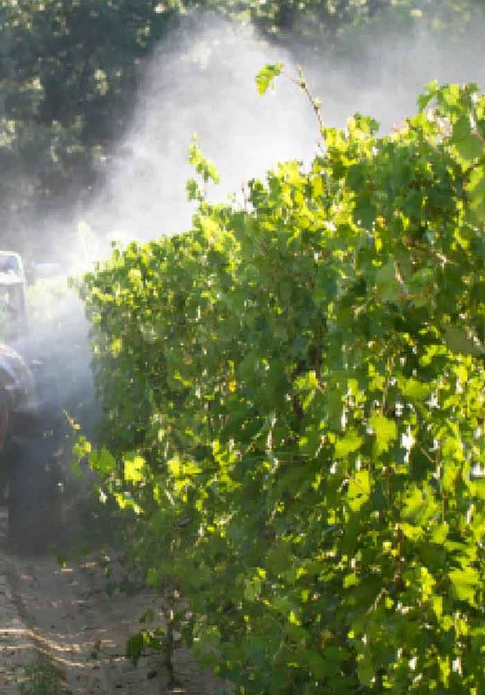 pesticides for plants